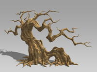 maya dry tree