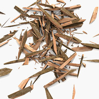 maya wood
