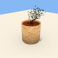 3ds vase plant