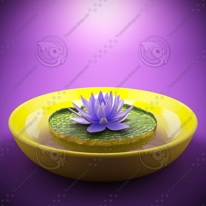 lotus_lightbox_purple_pós.jpg