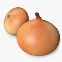 cinema4d realistic onion