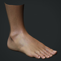 Realistic Male Foot