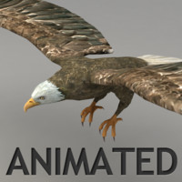 Lowpoly animated flying eagle