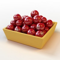 Fruit_011_Cranberry