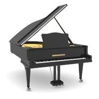 black grand piano lwo