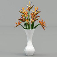3d strelitzia flower model
