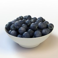 Fruit_12_Blueberry