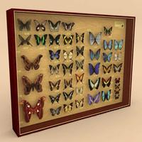 3d model butterflies