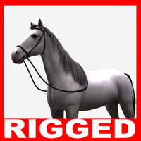 3d realistic horse rigged model