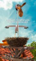maya bird nest