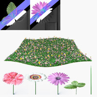 3d model meadow flowers