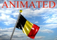 3d belgium flag model