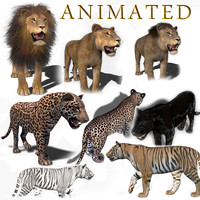 3d cats animation lion model