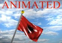 3d albania flag