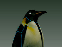 3d penguin robot emperor model