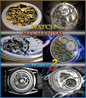 Watch mechanism coll 3