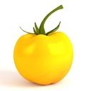 Yellow Tomato 3D models