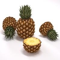 free pineapple 3d model