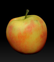 3dsmax apple