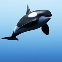 killer whale 3d 3ds