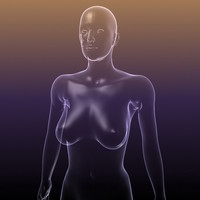 3d - transparent body female silhouette
