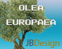 rpc olea olive tree plant 3d 3ds