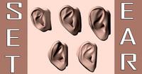 3d pack 5 ears model