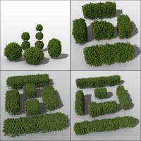 c4d shrub hedges