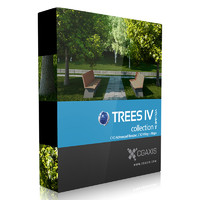 3d volume 34 trees iv