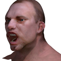 rigged male head 3d model