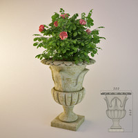 3d model garden vase rose bush
