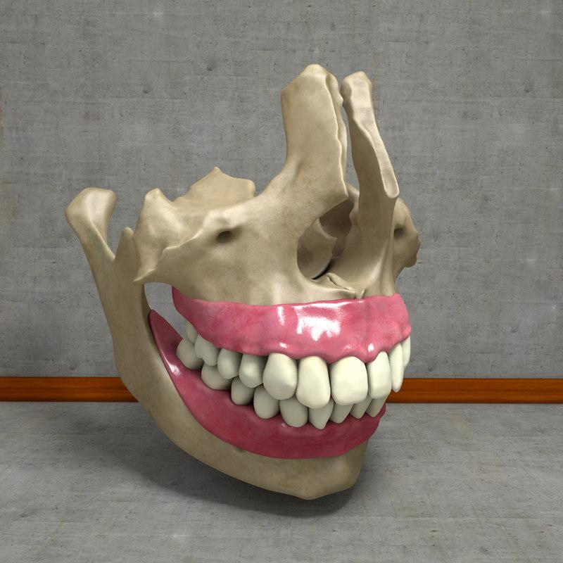 Teethtest01_0006.jpg
