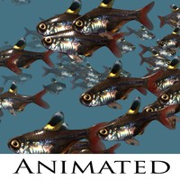 3d model school fish swimming