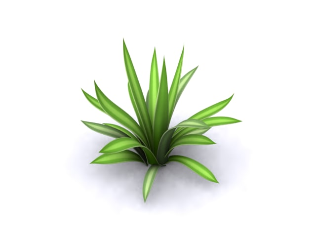 tsq_agave_render.png