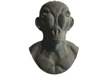 3ds max alien face