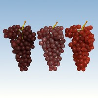 3ds red grapes