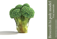 3d model of broccoli plant