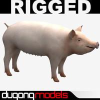 dugm02 pig 3d c4d