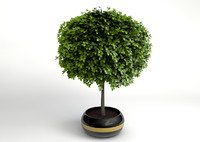 3ds max small decorative tree
