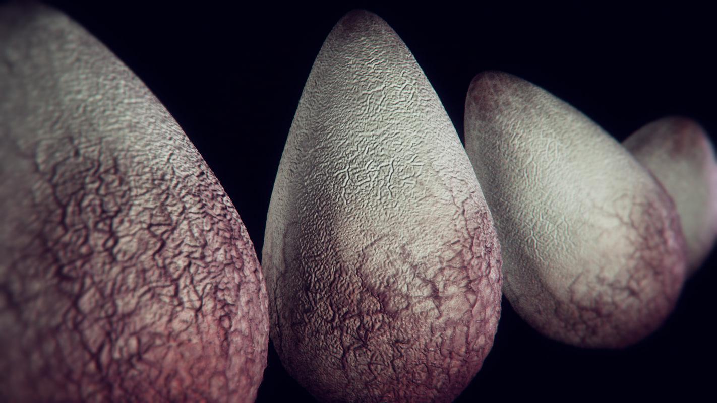 Alien_Eggs_Vray_Rendering_PostPro.jpg
