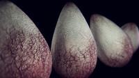 3d alien egg model