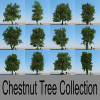 3d realistic chestnut trees