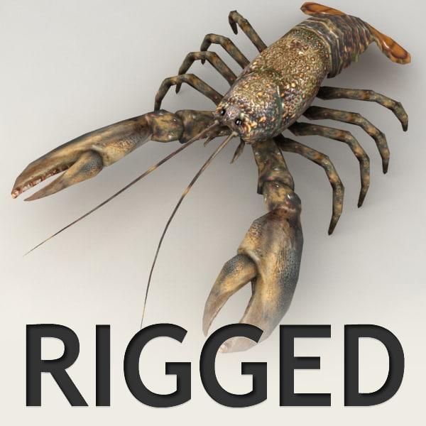 lobster_v0.png