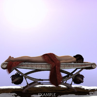 winter sunbathing bed 3d model