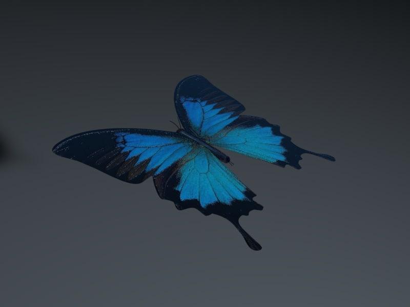 Butterfly Blue 1.jpg