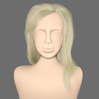 3d hairstyle blonde hair head model