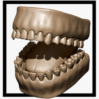 sculpt teeth 3d max