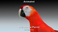 macaw parrot red 3d max