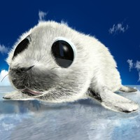 Cartoon Baby Seal Rigged