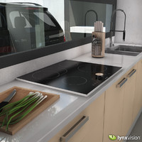 3d model induction cooktop gaggenau